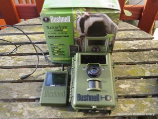 Bushnell trail camera