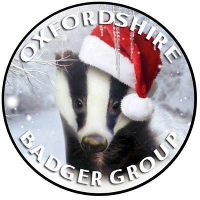 oxon-badger-group-cookie-picture