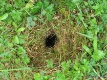 Hole beside Cumnor pond