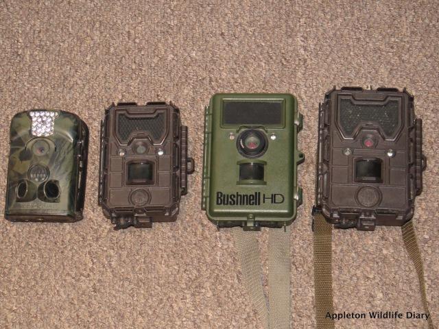 All 4 trail cameras