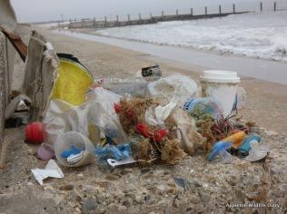 Horsey beach clean