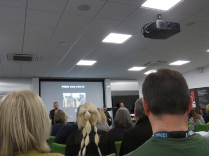 Wildlife crime talk at badger symposium 2018
