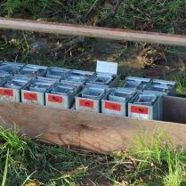 Longworth traps