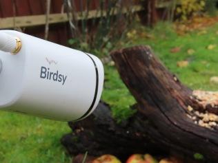 Birdsy camera